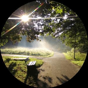 QiYoga im Herbst | Wandlungsphase Metall/Luft